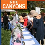 UPCOMING EVENT: CURE IN THE CANYONS 4